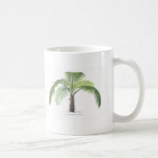 tropical palm tree collection - drawing VI Classic White Coffee Mug
