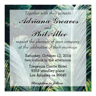 Tropical Palm Tree Leaves, Exotic Photograph Card