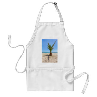 Tropical palm tree on sandy beach adult apron