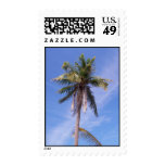 Tropical palm tree stamps