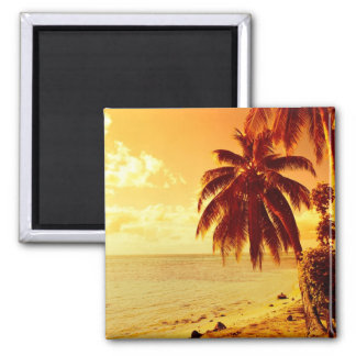Tropical palm trees at a beach at sunset magnet