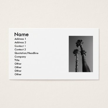 Professional Business Tropical Palm Trees Business Card