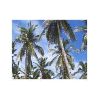 Tropical Palm Trees Canvas Print