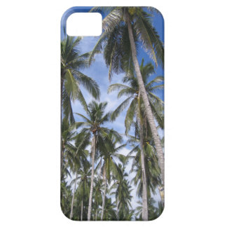 Tropical Palm Trees iPhone SE/5/5s Case