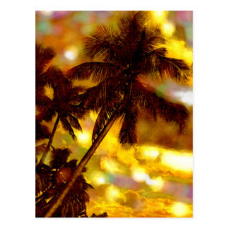 Tropical Palm Trees Post Cards
