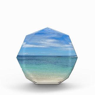 tropical paradise acrylic award