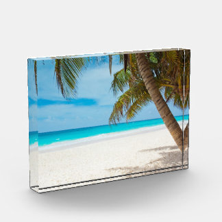 Tropical Paradise Beach Award