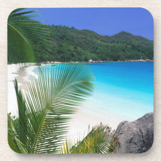 Tropical Paradise Beach Coaster Set