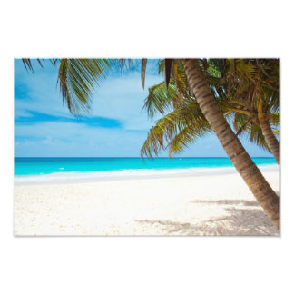 Tropical Paradise Beach Photo Print