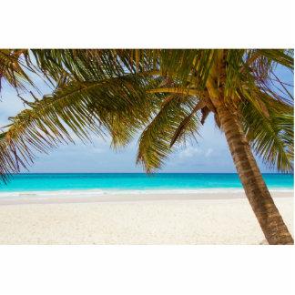 Tropical Paradise Beach Acrylic Cut Out