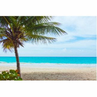 Tropical Paradise Beach Photo Cutouts
