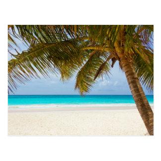 Tropical Paradise Beach Postcard