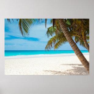 Tropical Paradise Beach Poster