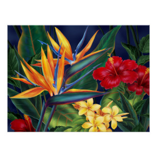 Tropical Paradise Fine Art Poster
