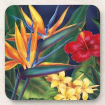 Tropical Paradise Hawaiian Floral Coasters