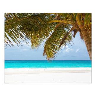 tropical paradise  island beach water sand surf flyer