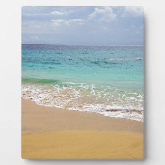 tropical paradise plaque