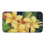 Tropical Paradise Plumeria iPhone 4 Cases