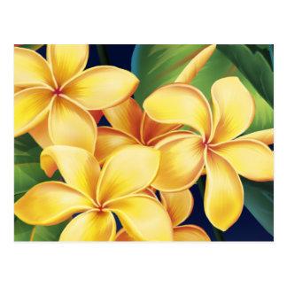 Tropical Paradise Plumeria Postcard