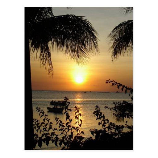 Tropical Paradise Post Card