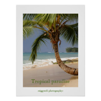 tropical paradise poster print