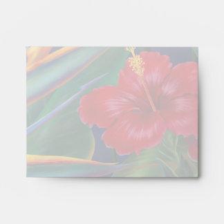 Tropical Paradise Stationary Envelopes