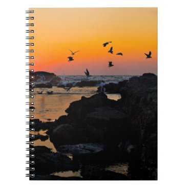 Professional Business Tropical Paradise Water Beach Sunset Palm Destiny Notebook