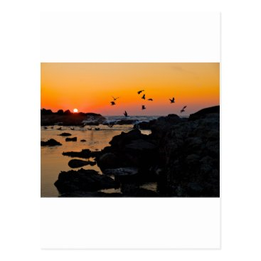 Professional Business Tropical Paradise Water Beach Sunset Palm Destiny Postcard