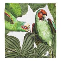 Tropical Parrot Birds Wildlife Animal Bandana