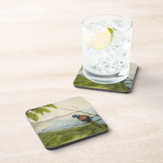 Tropical Parrot Coasters