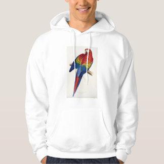 Tropical Parrot Hoodie