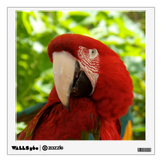 Tropical Parrot Wall Decal