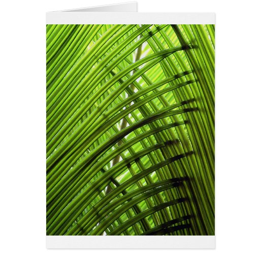 Tropical Pattern Greeting Card