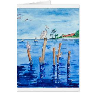 Tropical Pelicans Card