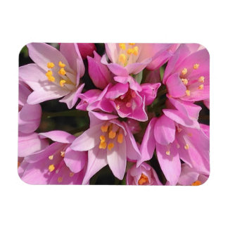 Tropical Pink and Yellow Flowers Magnet
