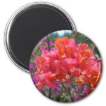Tropical Pink Bougainvillea 2 Inch Round Magnet