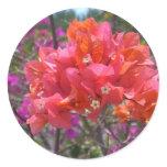 Tropical Pink Bougainvillea Classic Round Sticker