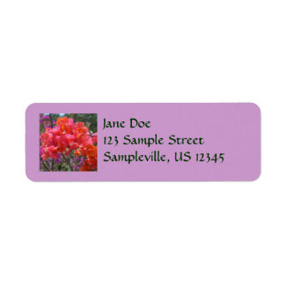 Tropical Pink Bougainvillea Label