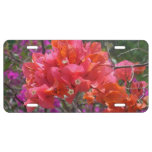 Tropical Pink Bougainvillea License Plate