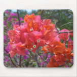 Tropical Pink Bougainvillea Mouse Pad