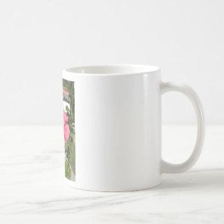 Tropical Pink Flower Coffee Mugs
