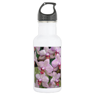 Tropical pink moth orchid flowers 18oz water bottle