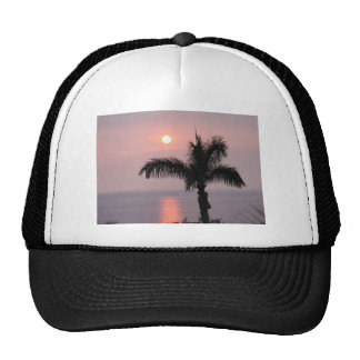 Tropical Pink Sunset and Palm Trucker Hat
