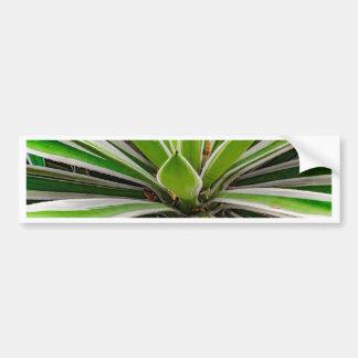 Tropical Plant Detail, Botanic Garden, Guayaquil Bumper Sticker