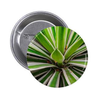Tropical Plant Detail, Botanic Garden, Guayaquil Button