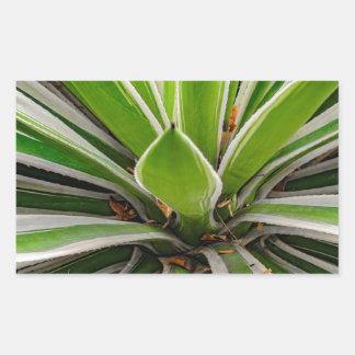 Tropical Plant Detail, Botanic Garden, Guayaquil Rectangular Sticker