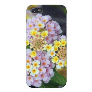 Tropical Plant Lantana Camara Cover For iPhone SE/5/5s