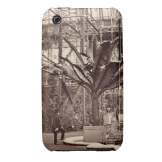 Tropical Plants in the Egyptian Room, Crystal Pala iPhone 3 Cover
