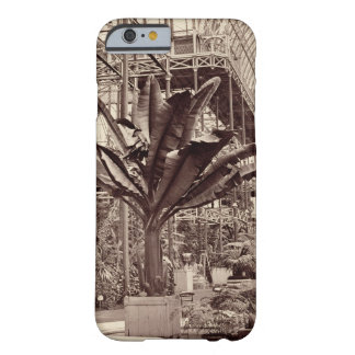 Tropical Plants in the Egyptian Room, Crystal Pala Barely There iPhone 6 Case