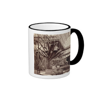 Tropical Plants in the Egyptian Room, Crystal Pala Ringer Coffee Mug